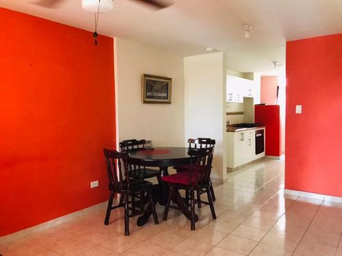 Alquilo Hermoso Apartamento En Las Acacias Con Piscina