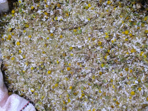 Flor De Manzanilla - kg a $64000