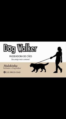 Imagem 1 de 1 de Serviços Para Pets  Petsistter E Dogwalker Em Domicílio