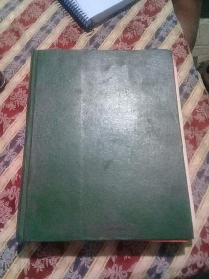 Manual Da C10 De Manutenção Original