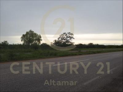 Terreno A Borde De Carretera En Venta, Ejido Benito Juarez, Altamira, Tamps.