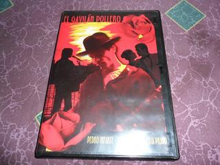 El Gavilan Pollero Pedro Infante Dvd Buenas Condiciones