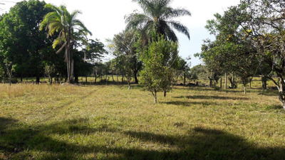 Terreno, 5 Hectareas / 9.88 Acres Titled. 80.000.00
