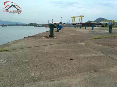 Área Portuária Para Terminal Privativo Guarujá/sp - V672