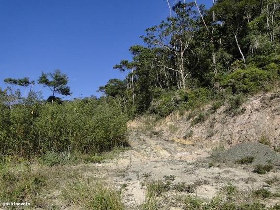 Sítio Para Venda Em Sapucaia, Volta Do Pião, 2 Dormitórios, 1 Banheiro - S121