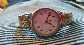Lindo Reloj Timex Stainless Steel Back, Wr 30m,