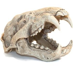 Enfeite De Resina Soma Esqueleto Cabeça De Puma