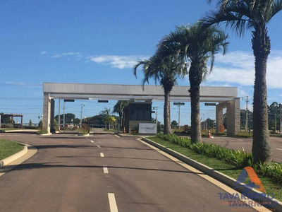 Terreno Residencial À Venda, Jardim Carvalho, Ponta Grossa. - Te1072