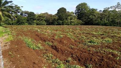 Se Vende Terreno En Cuatro Esquina, Pital, San Carlos