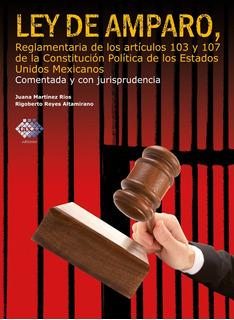 Ley De Amparo Comentada Y Con Jurisprudencia