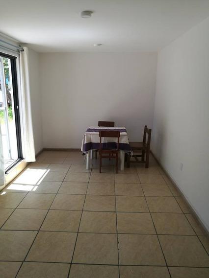 Departamento En Renta Dalias, Reforma