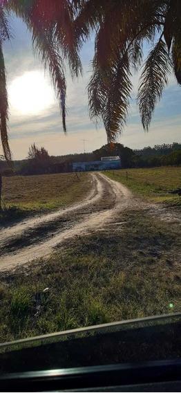 Campo Con Casa 24 Hectáreas.san Roque,chajarí , Entre Ríos