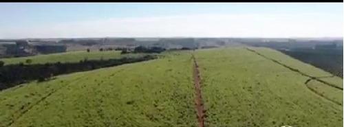Fazenda Para Venda Na Região De Araxa-mg, Com 172 Hectares, Roda Pivô, Atual 122 Hectares Em Cana Arrendada - Fa00209 - 69441761