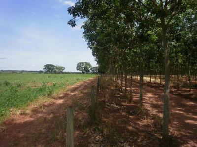 Rural - Ref: V4393