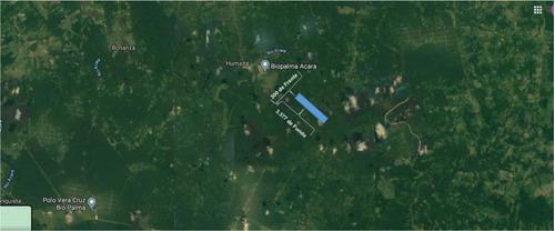 Imagem 1 de 6 de Terreno Rural - 100 Hectares - Acará, Acará/pa - Rmx_7971_436908