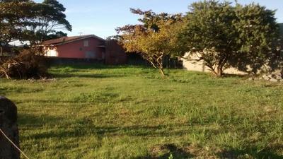 Terreno Em Perequê, Porto Belo/sc De 300m² À Venda Por R$ 320.000,00 - Te240062