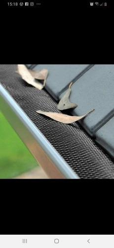 Imagen 1 de 5 de Limpieza Y Mantenimiento De Canaleta, Reparaciones En Gral.