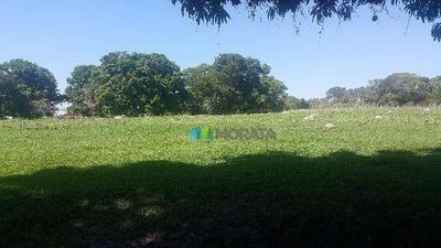 Fazenda - 1150 Hectares - Bonito De Minas (mg) - Cod: Mta788