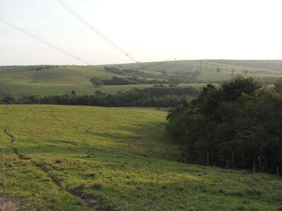 Vendo Fazenda Pecuaria 96,80 Hectares Em Itabera ( 4168 )