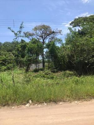 Imagem 1 de 7 de Terreno Em Itanhaém À Venda, 192 M² - 7470 Lc