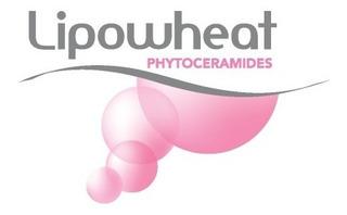 Lipowheat ® 350mg 120 Cápsulas Liquidas - Uso Oral