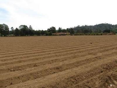 Terreno En Venta Cerca De Rancho Avándaro