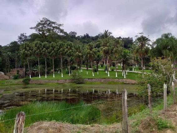 Juquiá/plantar/criar/lazer/morar/lago/piscina/ref:04938