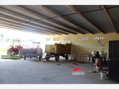 Bodega Comercial En Venta Venta, Ubicada En Coquimatlán, Colima; Con Un Terreno De 696 Metros Cuadrados