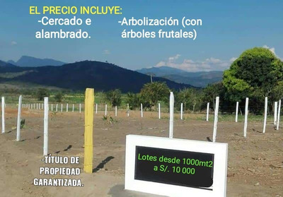 Lotes De 1000mt2 (cercado, Alambrado, Arbolizado) Tarapoto