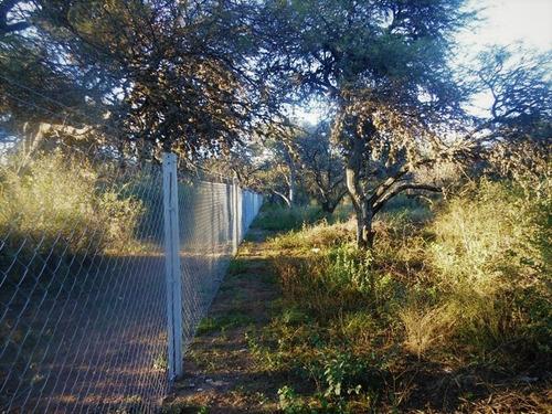Imagen 1 de 10 de Chacra Terreno Con Bosque Nativo De 1.8 Has Cura Brochero