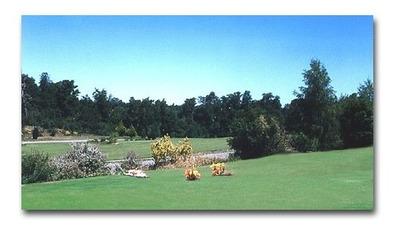 Cementerio Parque Osorno Oferta Única Libre Gastos Comunes