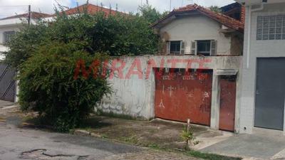 Terreno Em Santana - São Paulo, Sp - 317134