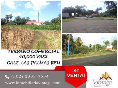 Terreno 40,000 Varas Calzada Las Palmas Reu