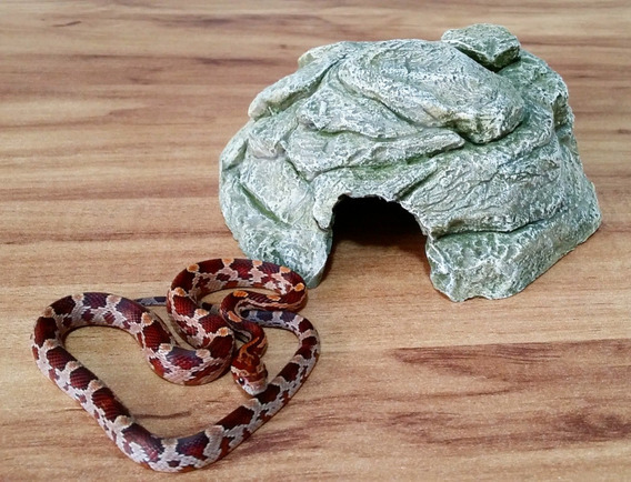 1 Toca P + 1 Bebedouro P - P/ Filhotes: Corn-snake,leo-gecko