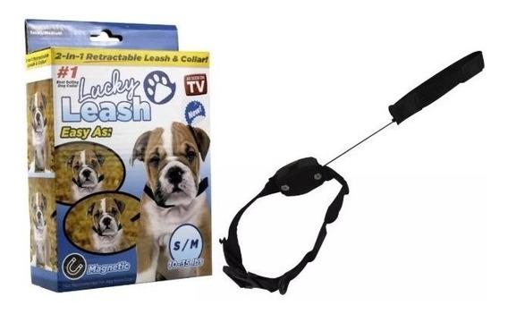 Coleira Guia Retratil Cachorro 1,2m Caes Passeio Pets