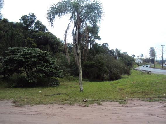 Terreno Comercial M² - Taboão Da Serra - Silva 4868