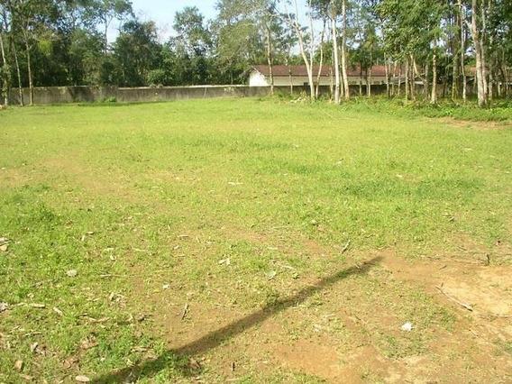 Chácara Residencial À Venda, Balneário Maranduba, Ubatuba - Ch0005. - Ch0005