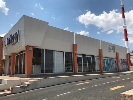 Local Comercial Renta Bernardo Quintana