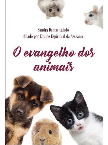 Evangelho Dos Animais - Mediunika