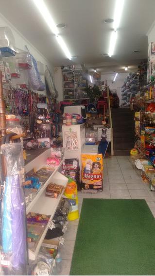 Pet Shop Excelente Em Avenida Barato