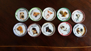 10 Tazos Colección The Dog Evercrip(carp13 -14