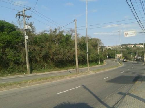 Terreno Em Lomba Do Pinheiro - Pj2558