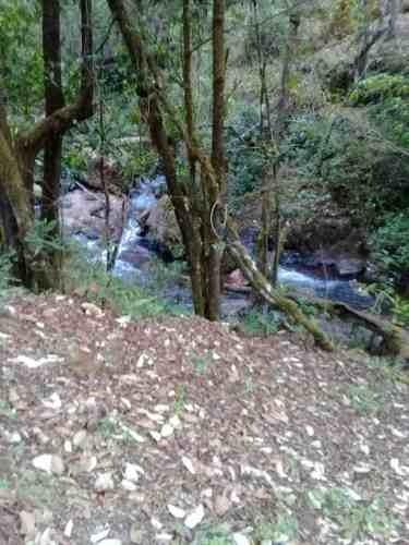 350 Hectáreas En Cerro Gordo Valle De Bravo
