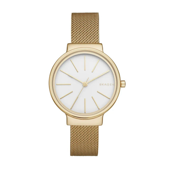 Relógio Skagen Feminino Tbd - Skw2477/4bn