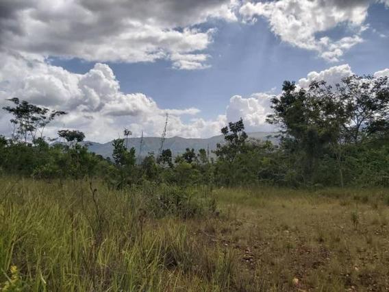 Terreno En Venta En Guataparo, Valencia Carabobo 19-14599 Em