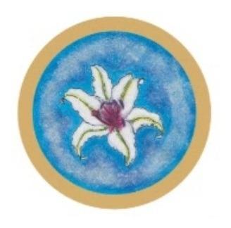 Imagem 1 de 1 de Mandala Univesal