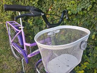 Bicicleta Tomaselli Lady Rodado 24