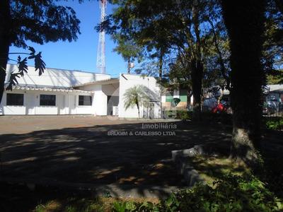 Sala Comercial Para Alugar - 03289.001