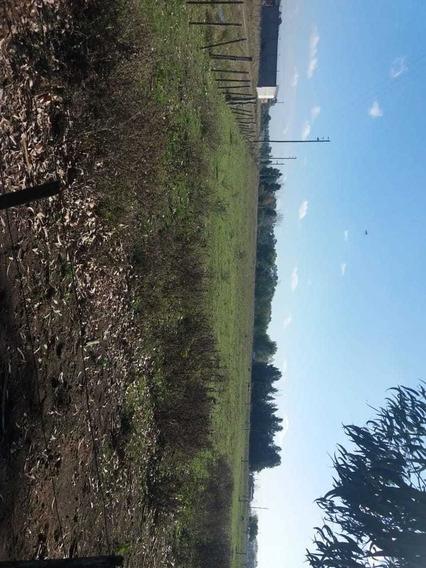 Bellísimos Terrenos En San Vicente