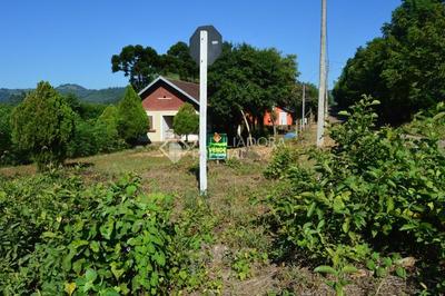 Chacara/fazenda/sitio - Centro - Ref: 286277 - V-286277